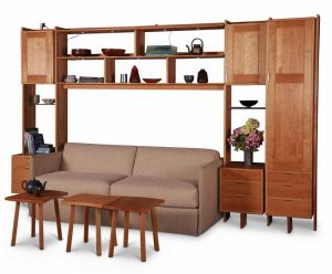 Wall Unit with Sofa Bed